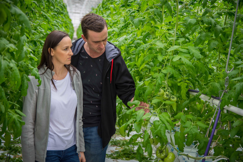 Dominika i Robert – rzetelna współpraca